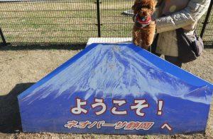 新東名高速道路 静岡SA(下り:名古屋方面)ドッグラン