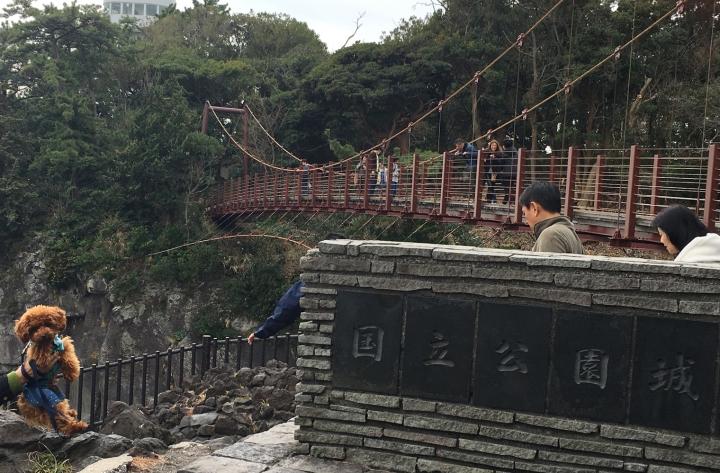 城ヶ崎海岸(伊東市 伊豆高原)わんこと渡る吊り橋