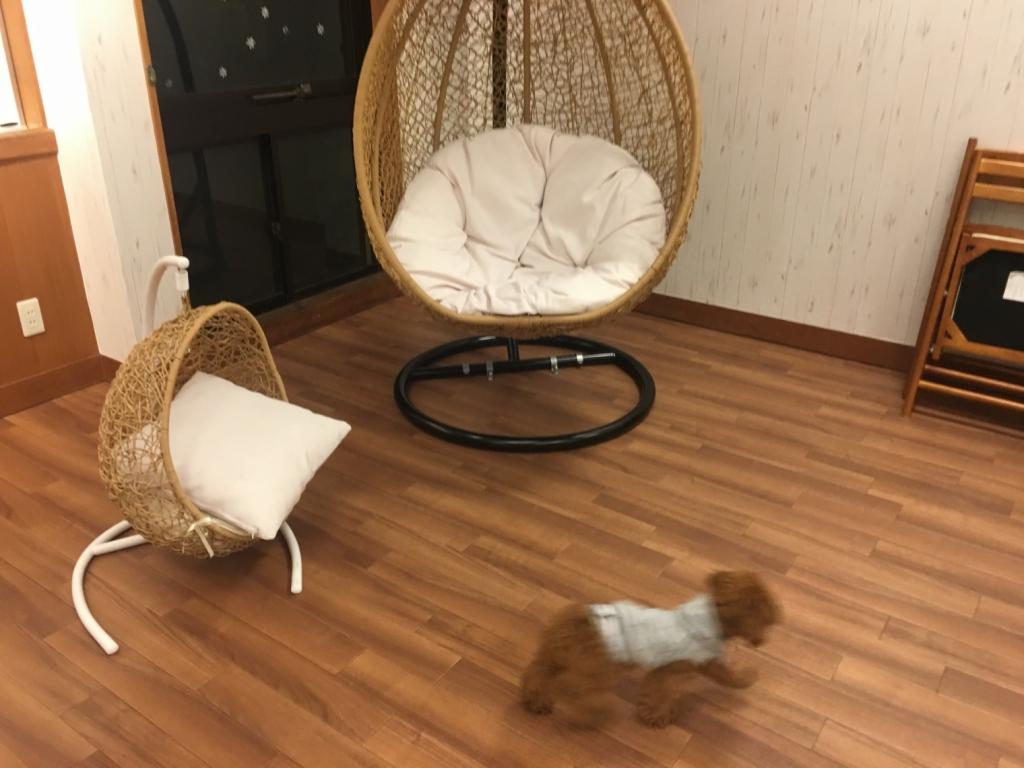 こんな椅子もあった