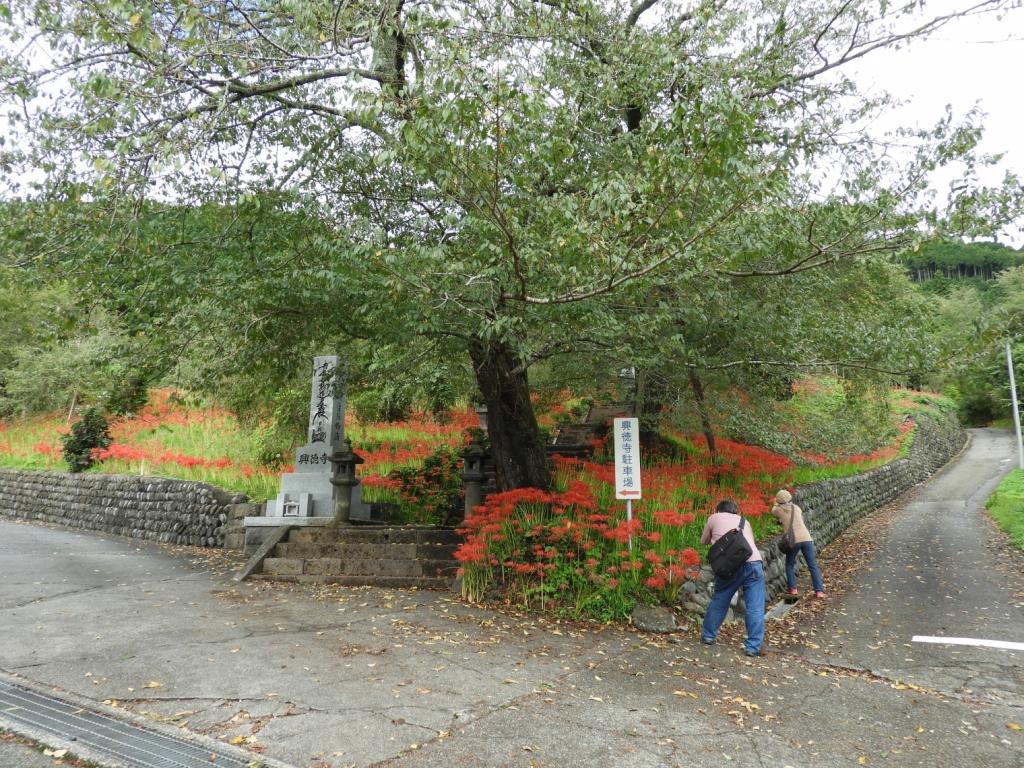 興徳寺入り口