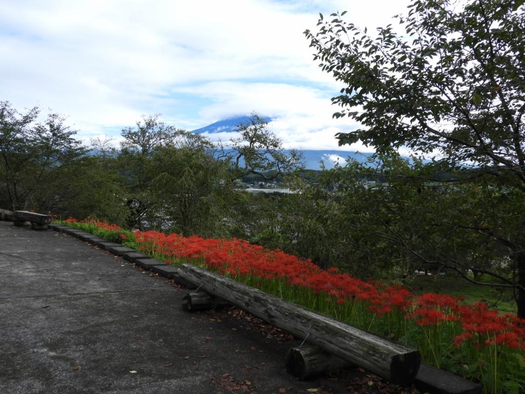 天気がよければ富士山も