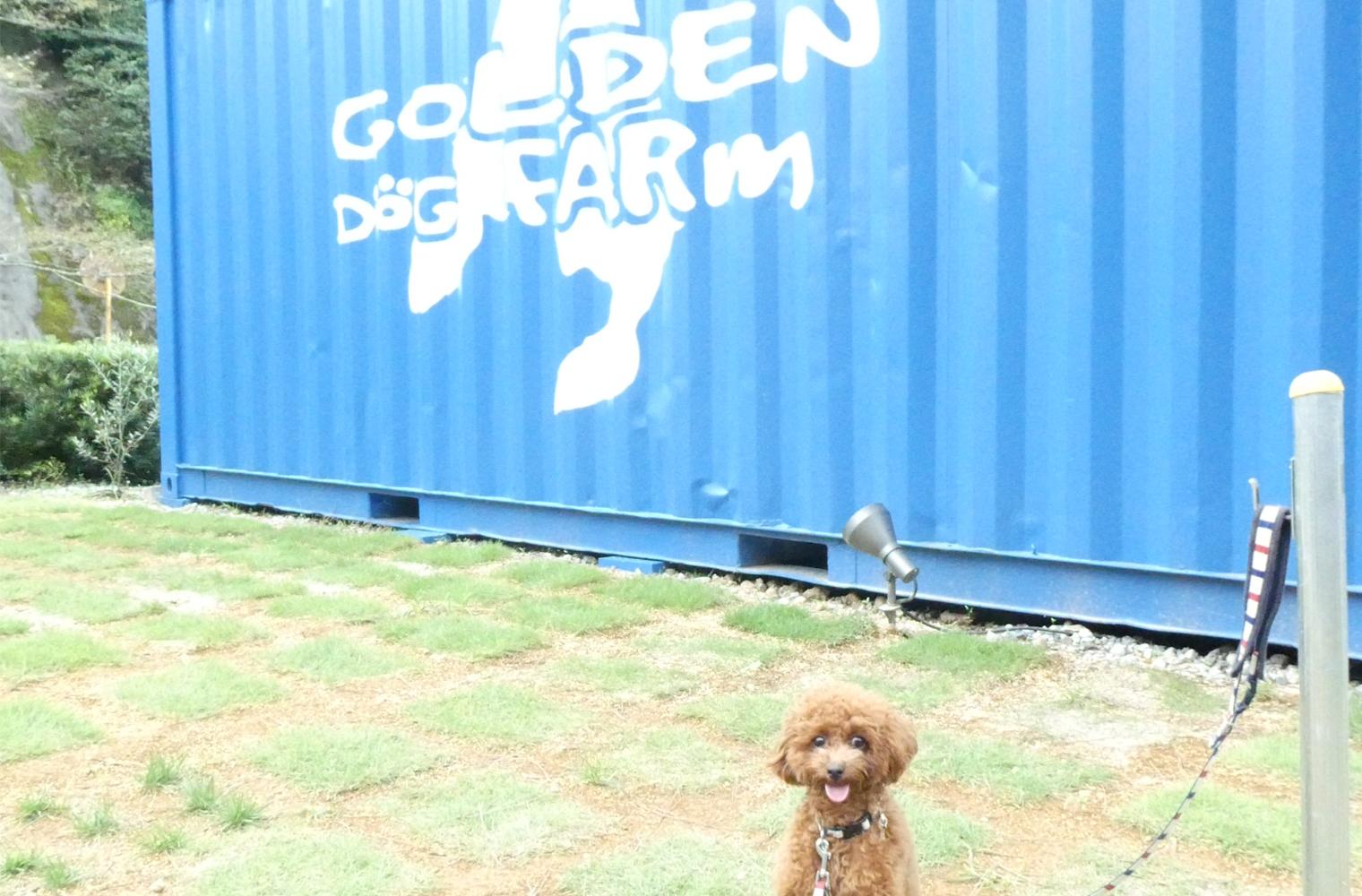 GOLDEN DOG FARm(ゴールデンドッグファーム)-静岡市葵区水見色