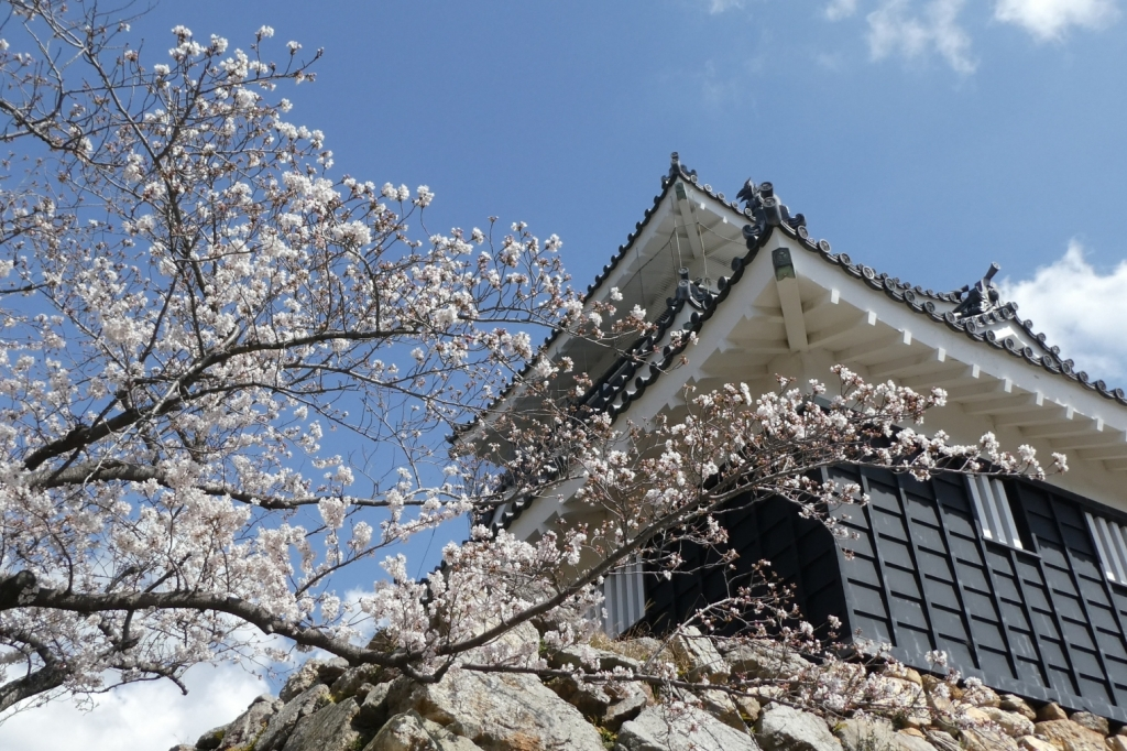 浜松城かっこいい