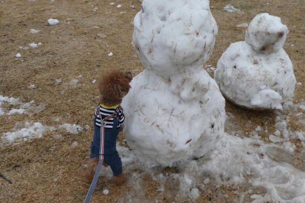 雪だるまとふうた