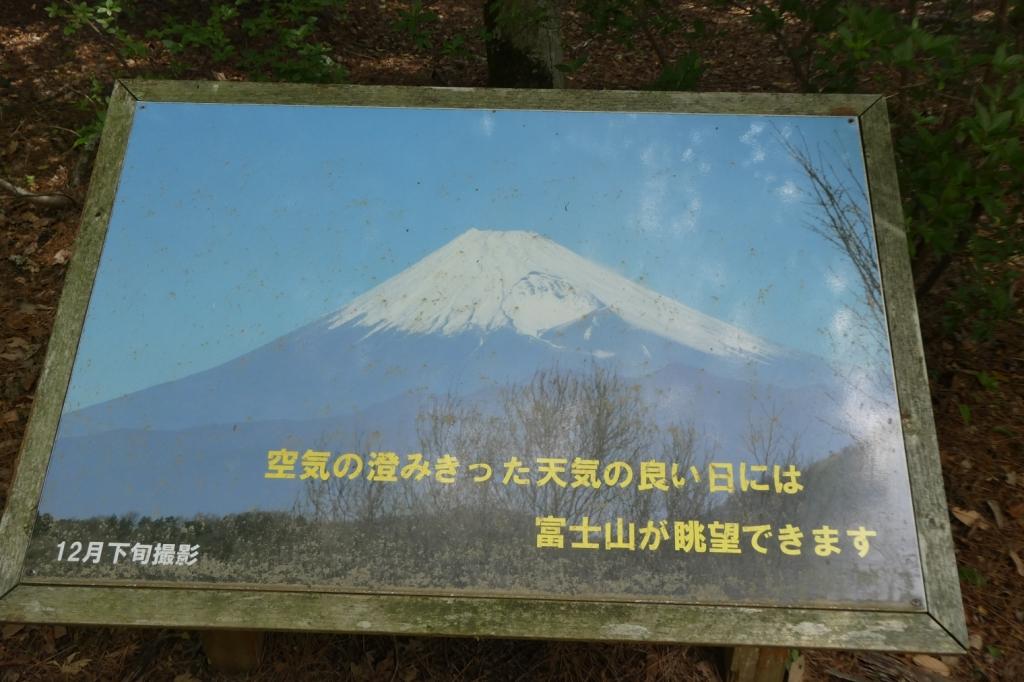 富士山が見れるスポット