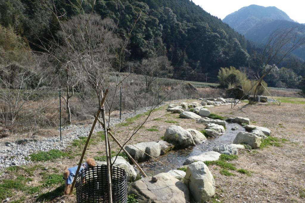沢からひいてきた川