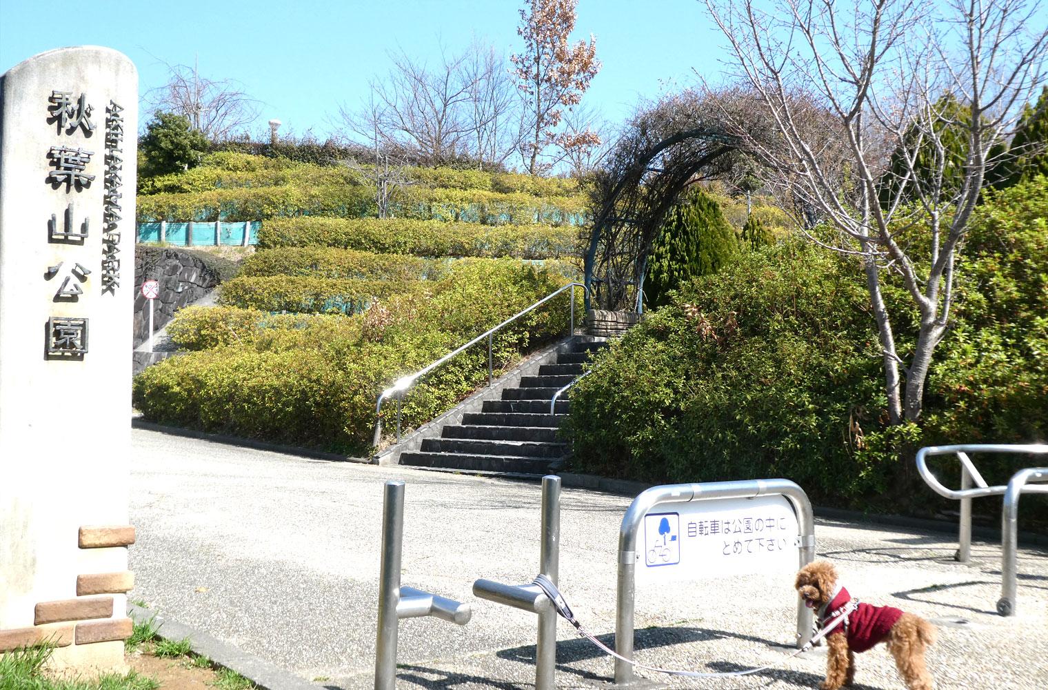 東名清水ICそばの秋葉山公園でお散歩(静岡市清水区)
