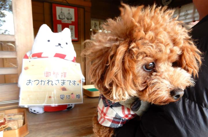 矢奈比賣神社(見付天神)霊犬神社 しっぺいの神社に行ってきたよ(磐田市)