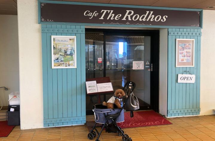ドッグカフェ&ドッグラン Café The Rodhos(カフェザロードス)(浜名湖レークサイドプラザ内)浜松市北区三ヶ日町-店内わんちゃんOK