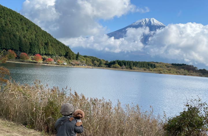 田貫湖でお散歩してきたよ(富士宮市)